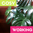 Cosyworking sq 114 114